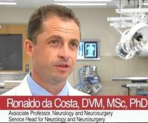 Мастер класс по неврологии