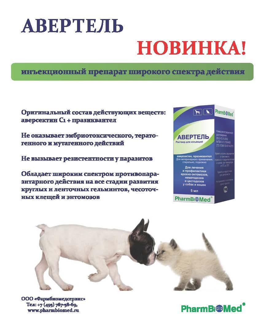 Схема лечения кошек от глистов